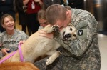 dogswelcomesoldiers