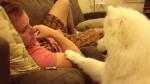 puppyhugs