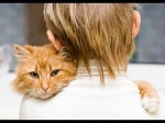 Cats Love Their Human Owners or Human Owners Love Their Cats? So cute!