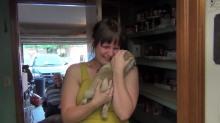 Surprise Pug