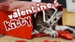 Nylah wanted to wish you a Happy Valentine's Day. Happy Valentine's Day!!!